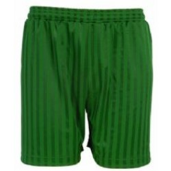 PE Shorts - Shadow Stripe, Emerald Green
